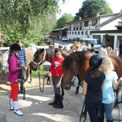 Kinderreise Reiterfreizeit 2016